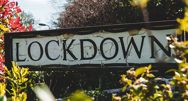 Assessing the lockdown's damage