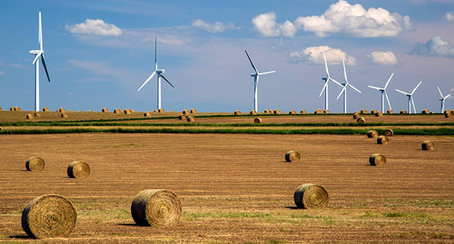 Investing in green future easier said than done for Alberta